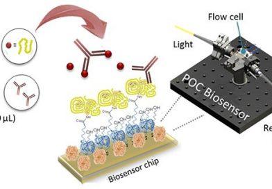 Biossensor que utiliza Nanotecnologia auxilia a controlar dieta de glúten para celíacos
