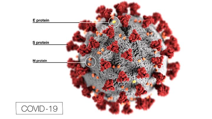 A Nanotecnologia no Combate ao Coronavírus